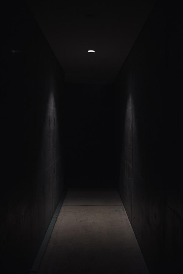 Storing wine in the dark