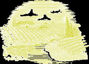 Woodcut vineyard